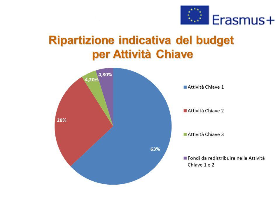Ripartizione indicativa del budget