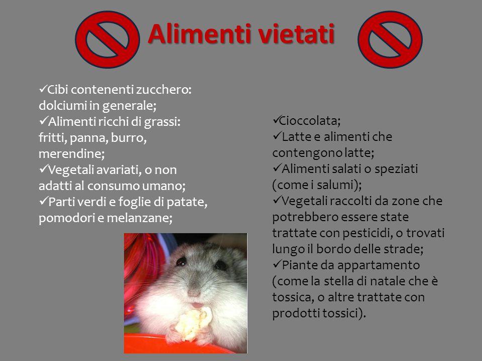 Alimenti vietati Cibi contenenti zucchero: dolciumi in generale; Alimenti ricchi di grassi: fritti, panna, burro, merendine;