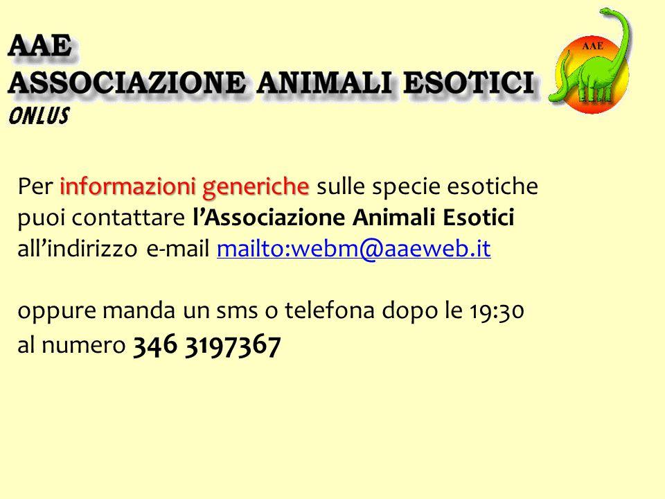 Per informazioni generiche sulle specie esotiche puoi contattare l'Associazione Animali Esotici all'indirizzo e-mail mailto:webm@aaeweb.it