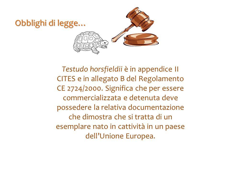 Obblighi di legge…