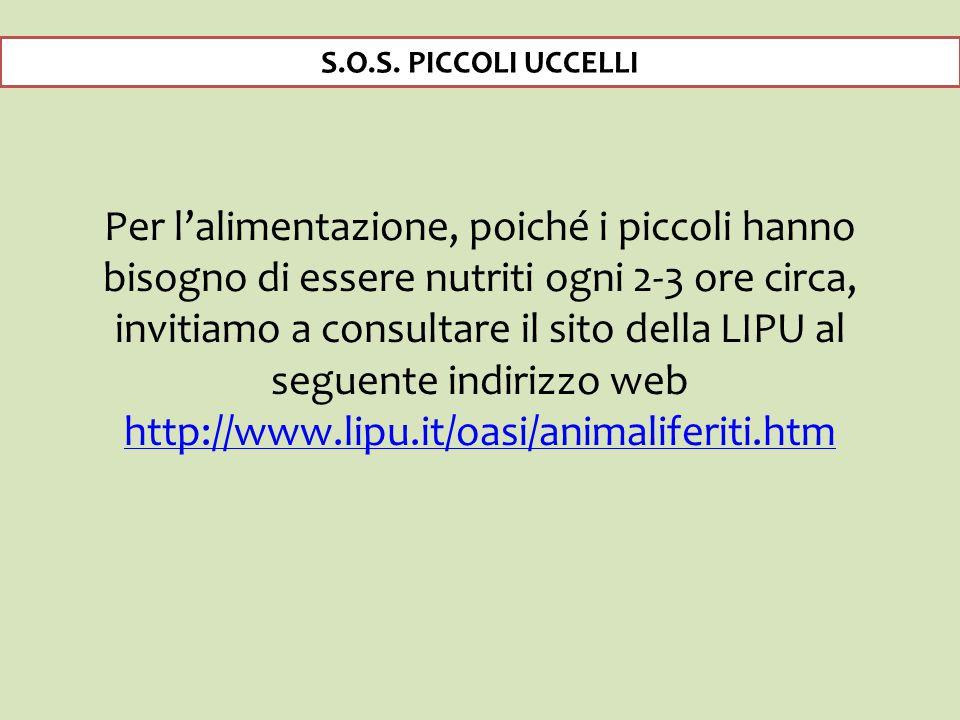 S.O.S. PICCOLI UCCELLI
