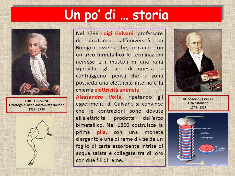 Fisiologo, fisico e anatomista italiano