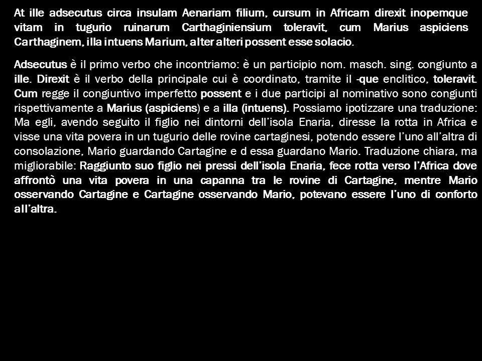At ille adsecutus circa insulam Aenariam filium, cursum in Africam direxit inopemque vitam in tugurio ruinarum Carthaginiensium toleravit, cum Marius aspiciens Carthaginem, illa intuens Marium, alter alteri possent esse solacio.