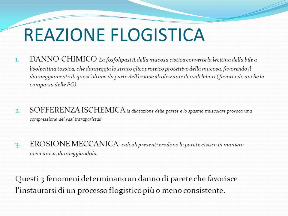 REAZIONE FLOGISTICA
