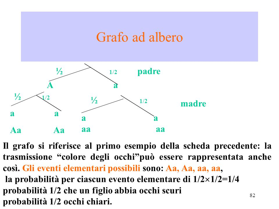 Grafo ad albero ½ 1/2 padre A a ½ 1/2 ½ 1/2 madre a a Aa Aa a a aa aa
