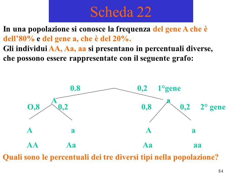 Scheda 22 In una popolazione si conosce la frequenza del gene A che è dell'80% e del gene a, che è del 20%.