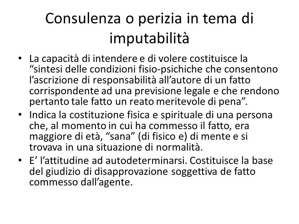 Consulenza o perizia in tema di imputabilità