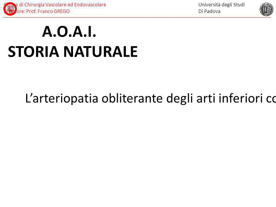 A.O.A.I. STORIA NATURALE.