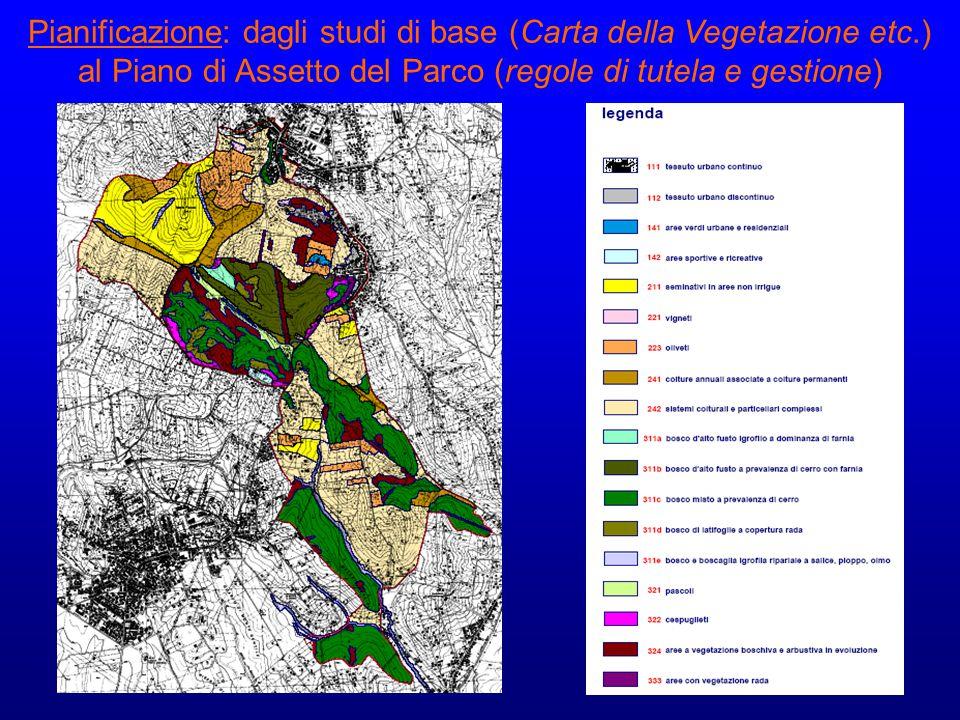 Pianificazione: dagli studi di base (Carta della Vegetazione etc.)