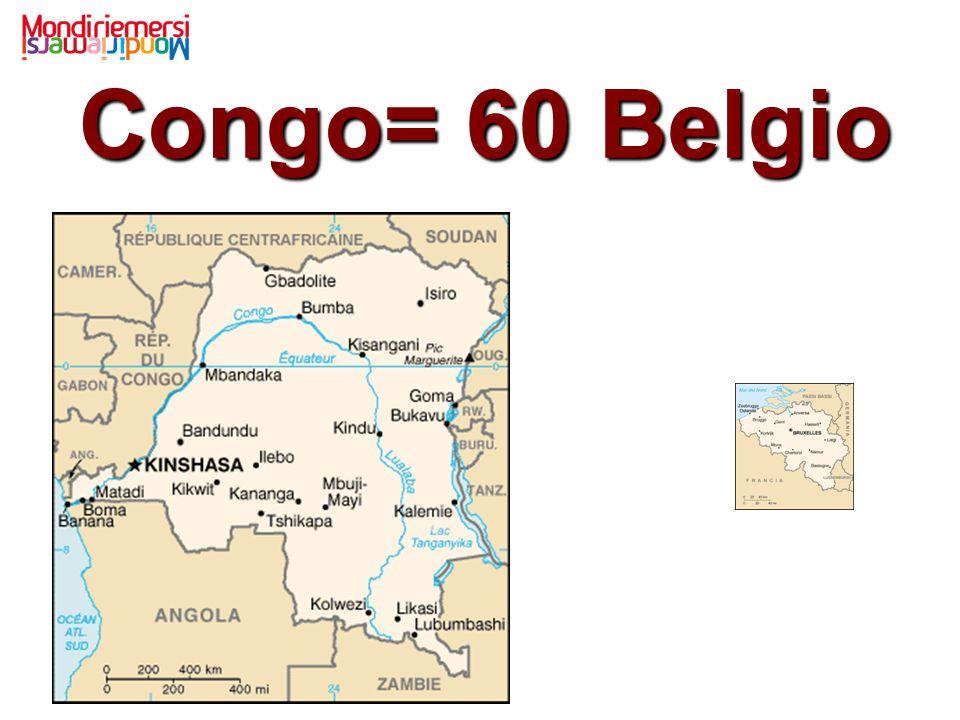 Congo= 60 Belgio