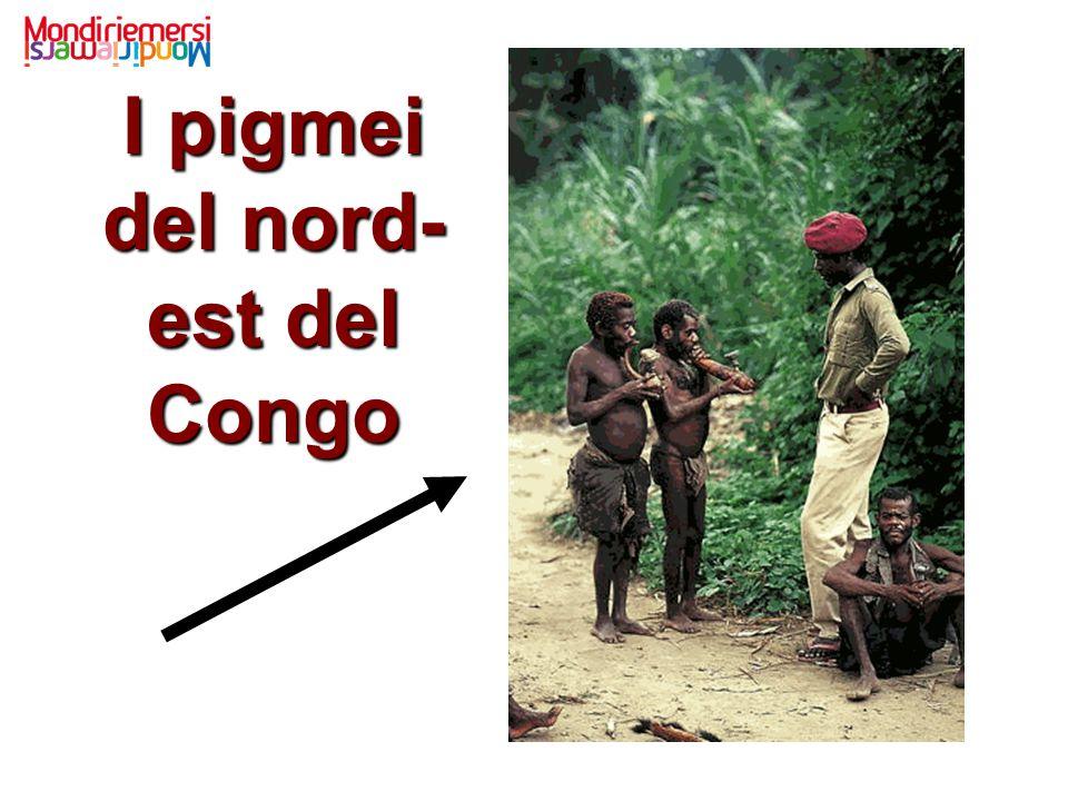 I pigmei del nord-est del Congo