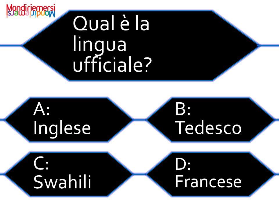 Qual è la lingua ufficiale
