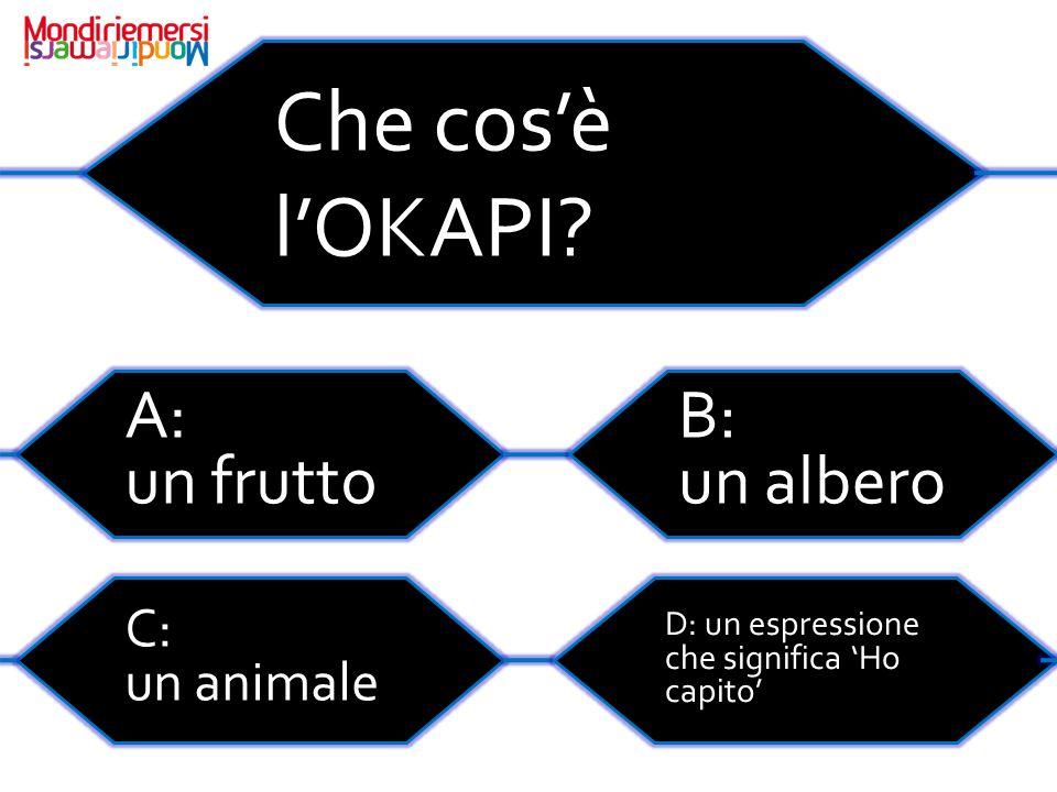 Che cos'è l'OKAPI A: un frutto B: un albero C: un animale