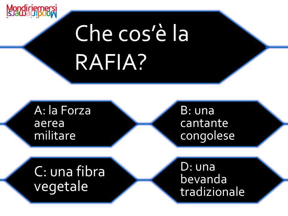 Che cos'è la RAFIA C: una fibra vegetale A: la Forza aerea militare