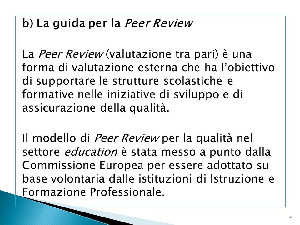 b) La guida per la Peer Review