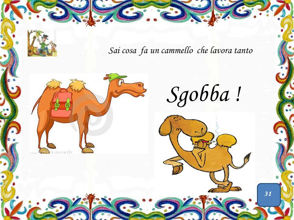 Sgobba ! Sai cosa fa un cammello che lavora tanto