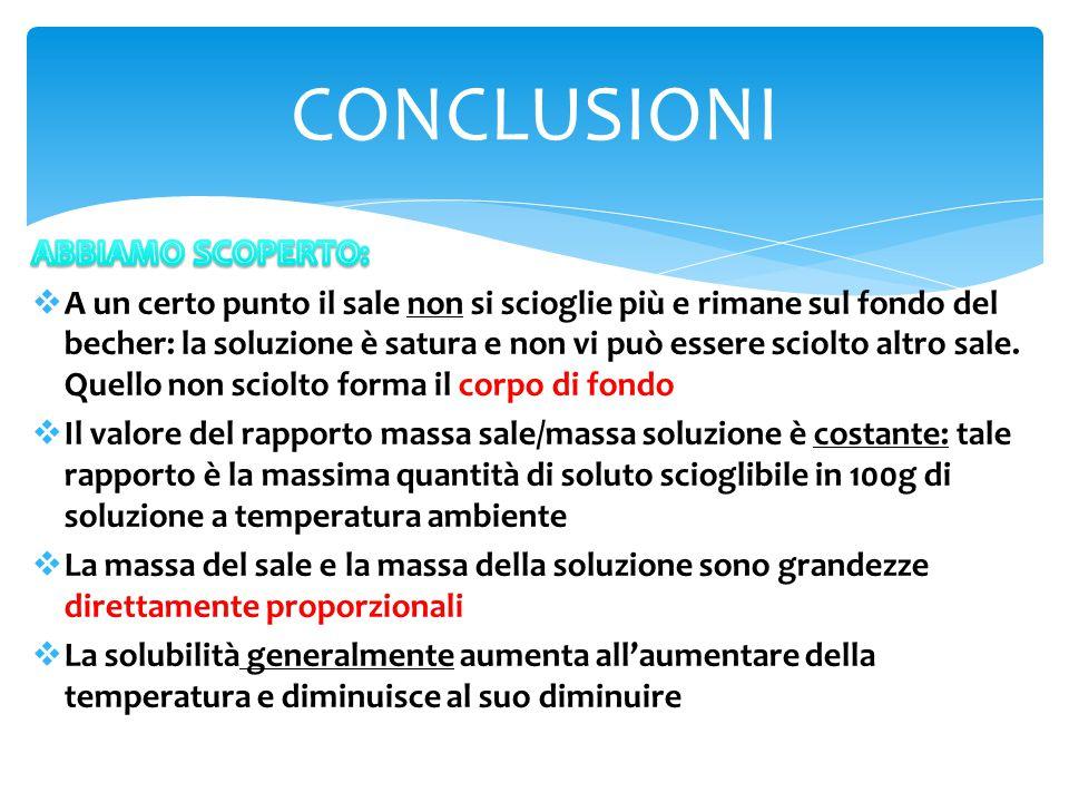 CONCLUSIONI ABBIAMO SCOPERTO: