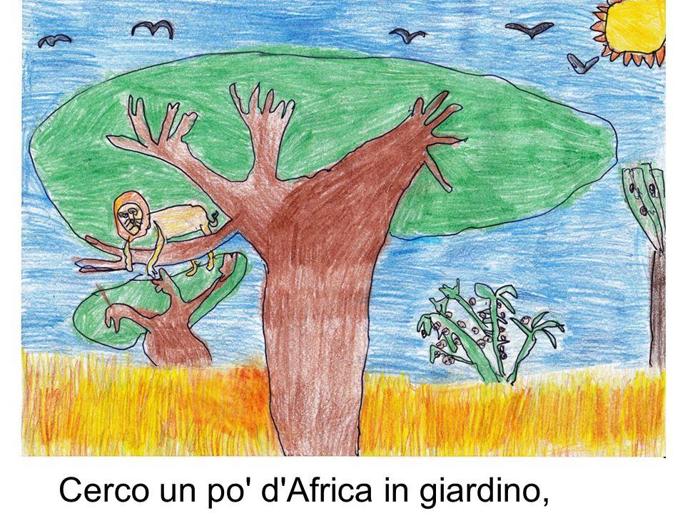 Cerco un po d Africa in giardino,