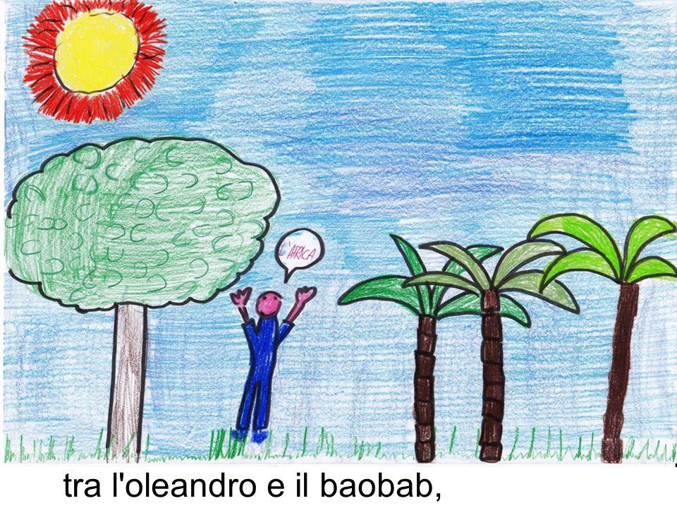 tra l oleandro e il baobab,