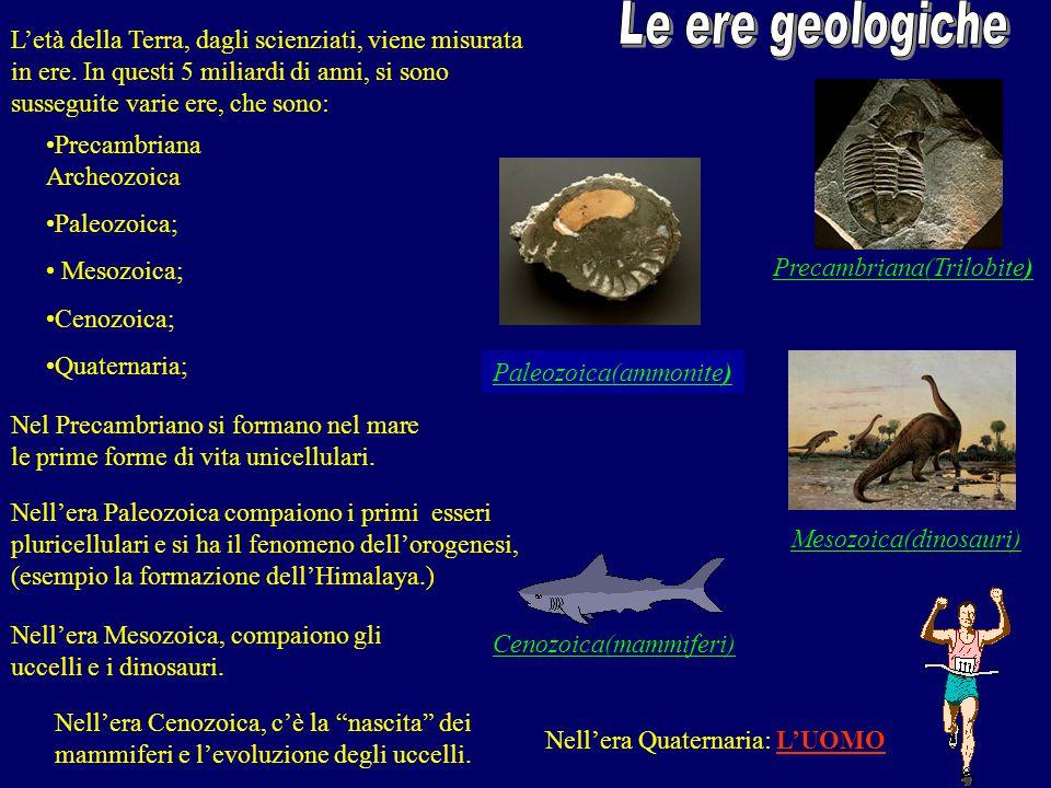 Le ere geologiche L'età della Terra, dagli scienziati, viene misurata in ere. In questi 5 miliardi di anni, si sono susseguite varie ere, che sono: