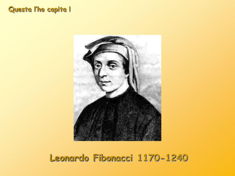 Questa l'ho capita ! Leonardo Fibonacci 1170-1240