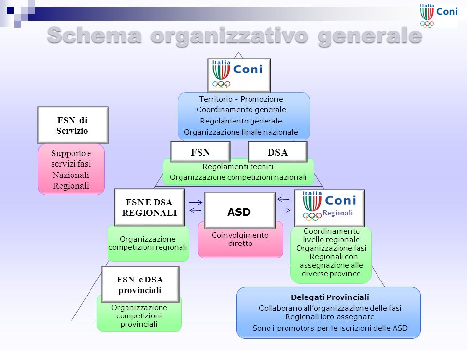Schema organizzativo generale