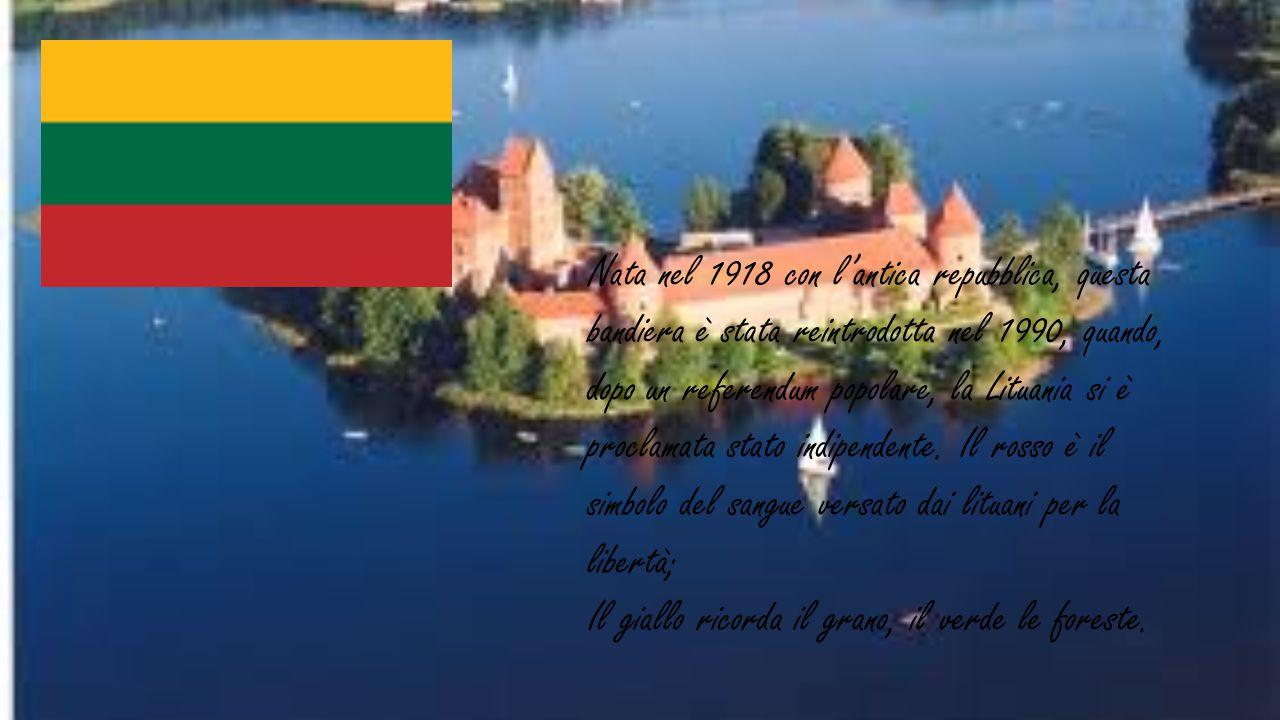Nata nel 1918 con l'antica repubblica, questa bandiera è stata reintrodotta nel 1990, quando, dopo un referendum popolare, la Lituania si è proclamata stato indipendente. Il rosso è il simbolo del sangue versato dai lituani per la libertà;