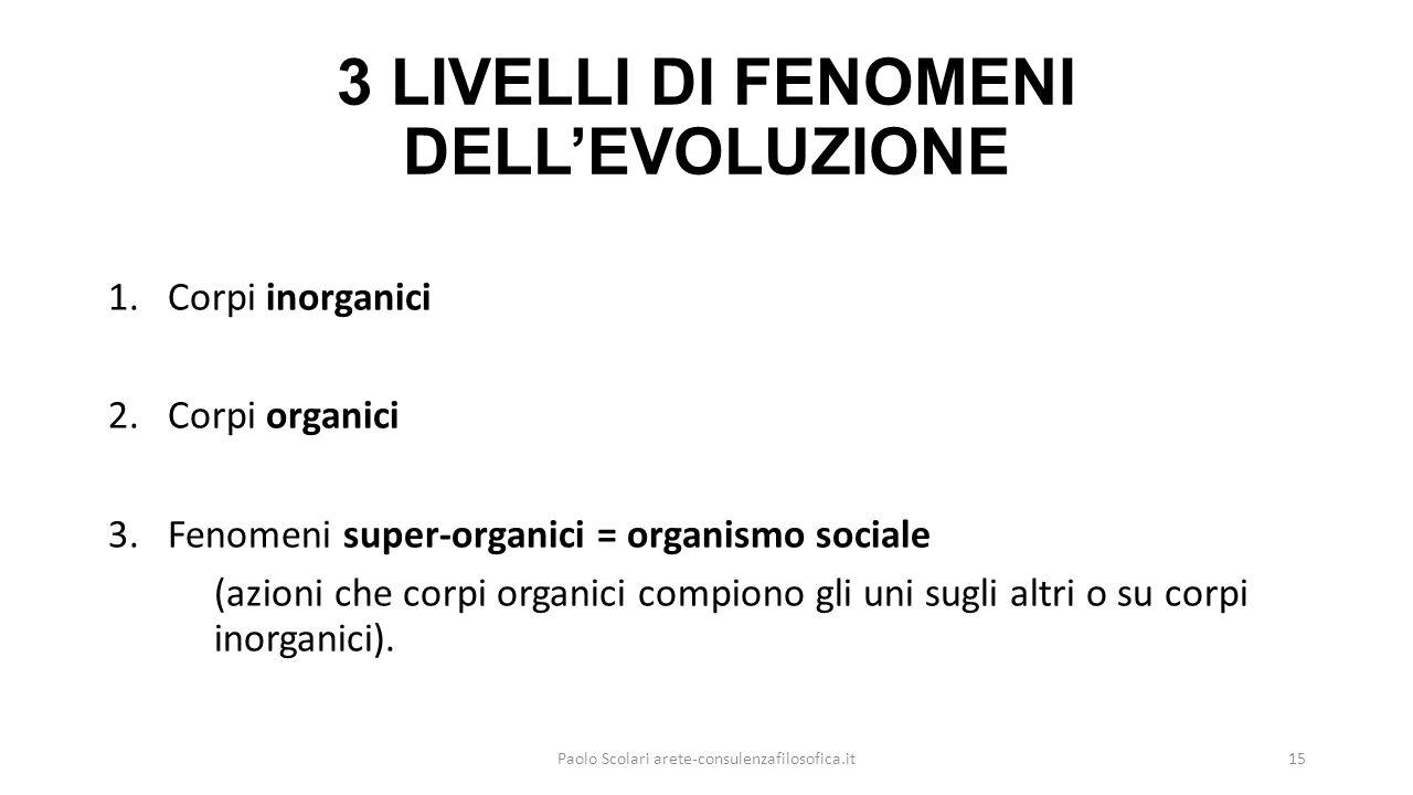 3 LIVELLI DI FENOMENI DELL'EVOLUZIONE