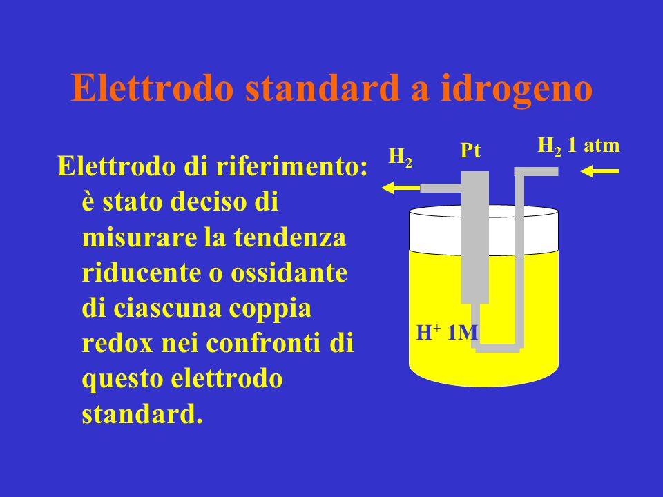 Elettrodo standard a idrogeno