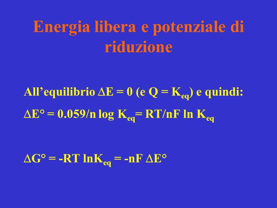 Energia libera e potenziale di riduzione