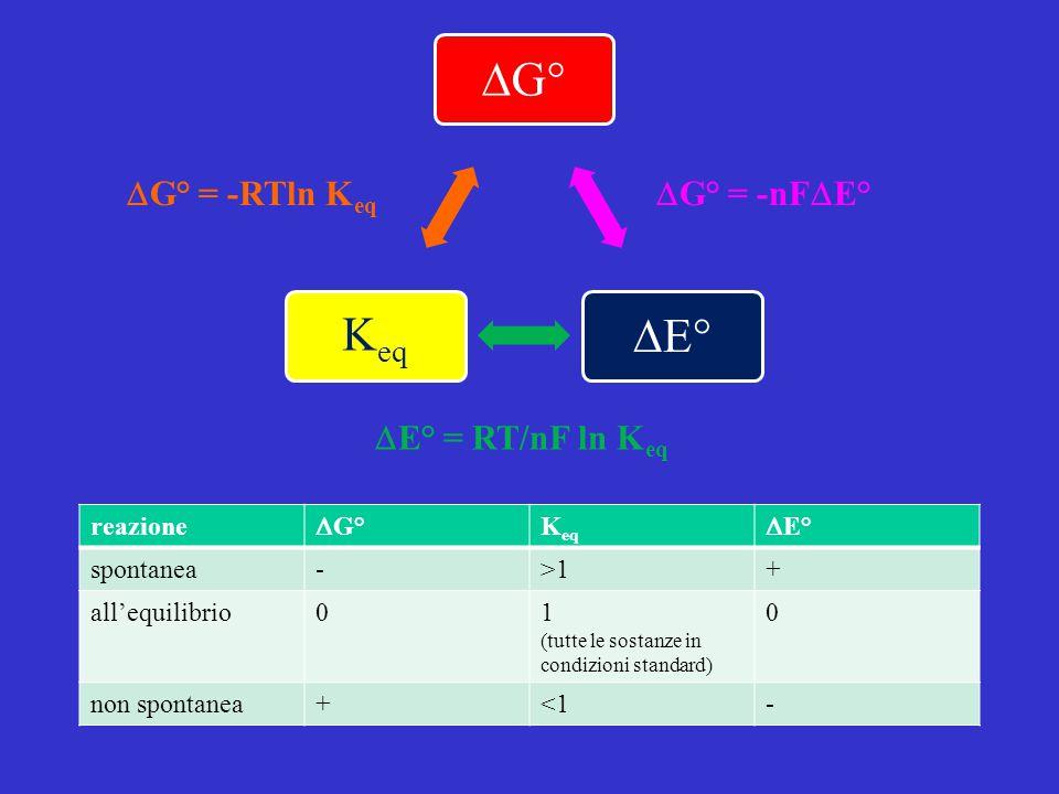 DG° = -RTln Keq DG° = -nFDE° DE° = RT/nF ln Keq reazione DG° Keq DE°
