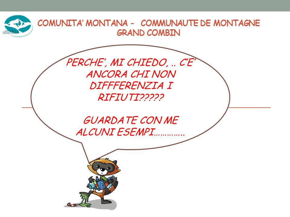 COMUNITA' MONTANA - COMMUNAUTE DE MONTAGNE GRAND COMBIN