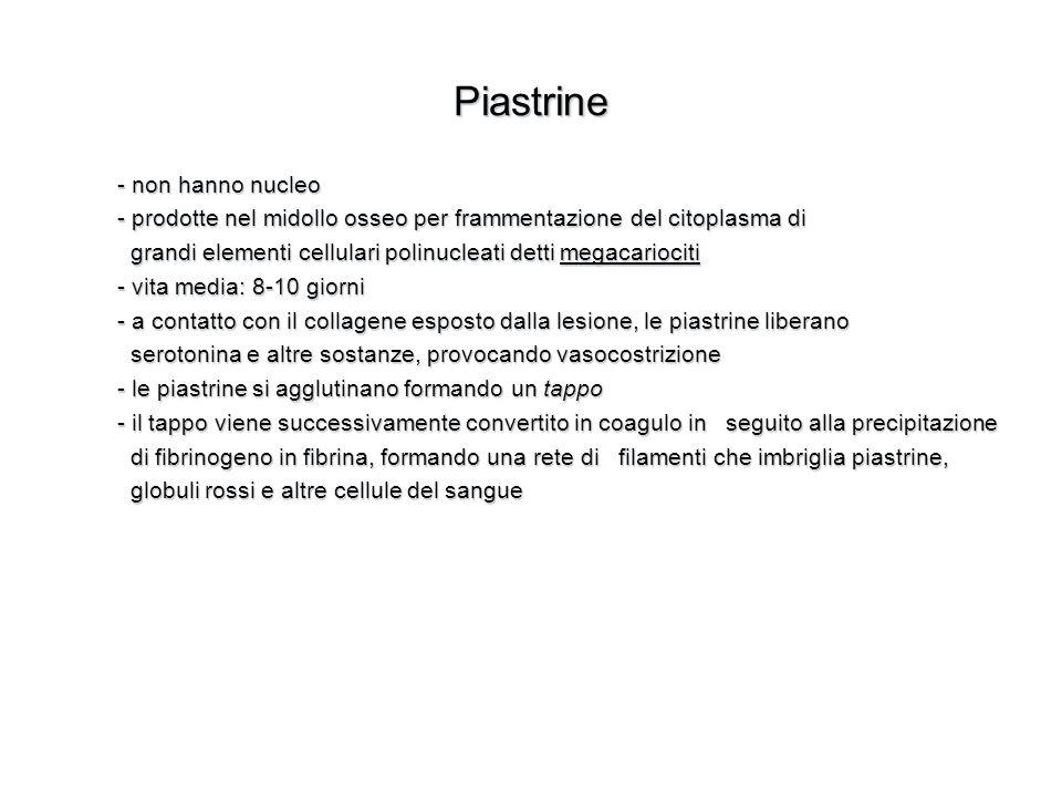 Piastrine - non hanno nucleo