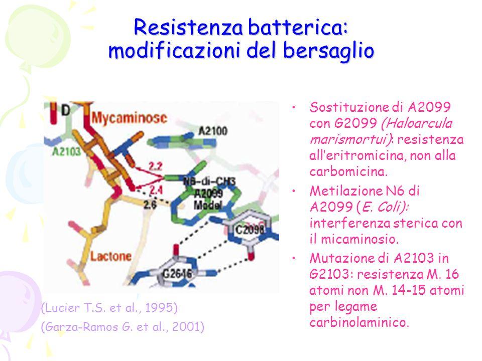 Resistenza batterica: modificazioni del bersaglio