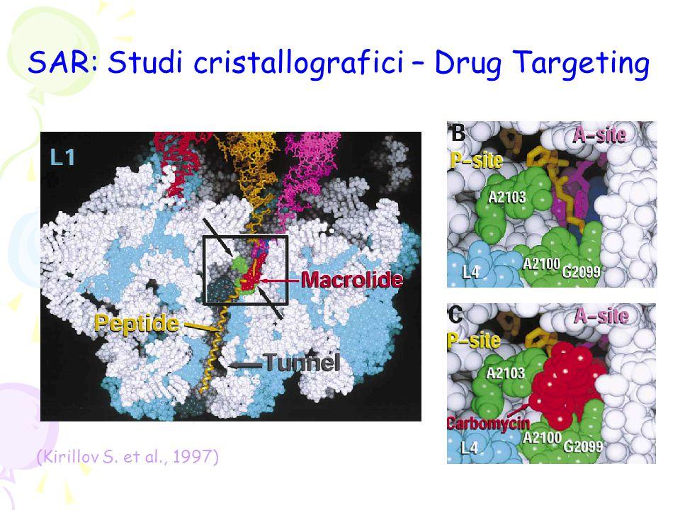SAR: Studi cristallografici – Drug Targeting