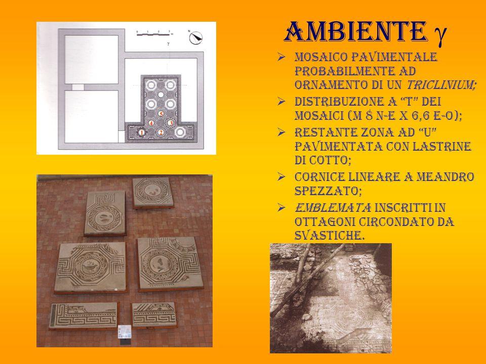Ambiente g Mosaico pavimentale probabilmente ad ornamento di un triclinium; Distribuzione a T dei mosaici (m 8 n-e x 6,6 e-o);