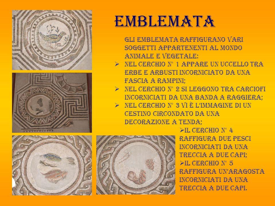 emblemata Gli emblemata raffigurano vari soggetti appartenenti al mondo animale e vegetale: