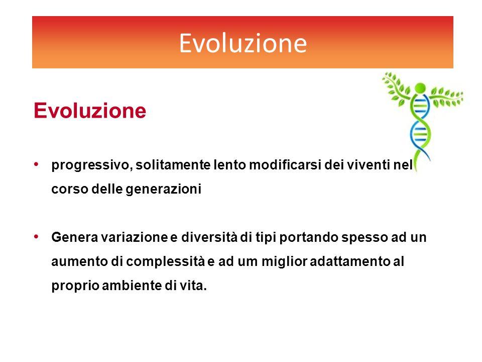 Evoluzione Evoluzione