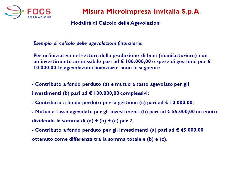 Misura Microimpresa Invitalia S.p.A.