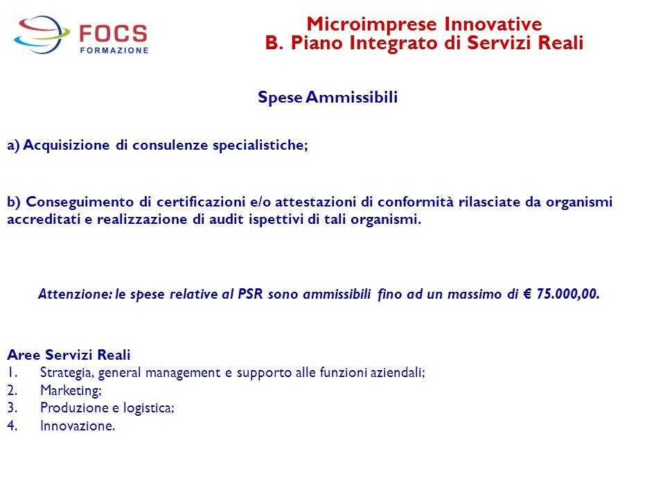 Microimprese Innovative B. Piano Integrato di Servizi Reali