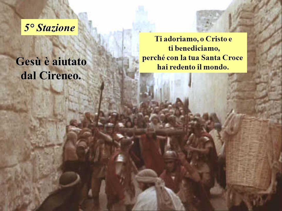 perché con la tua Santa Croce Gesù è aiutato dal Cireneo.