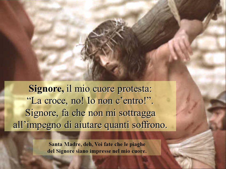Signore, il mio cuore protesta: La croce, no! Io non c'entro! .