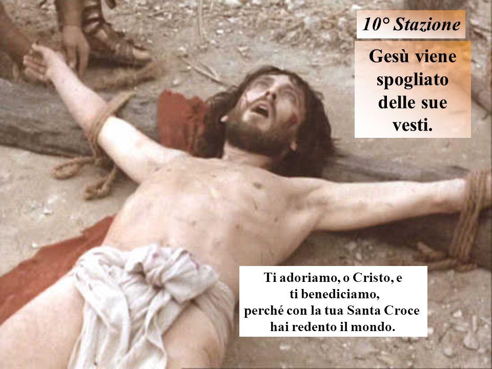 Gesù viene spogliato delle sue vesti. perché con la tua Santa Croce