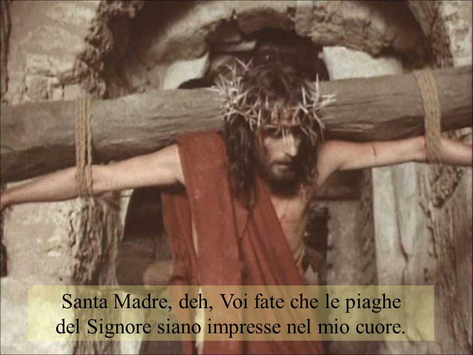 Santa Madre, deh, Voi fate che le piaghe del Signore siano impresse nel mio cuore.