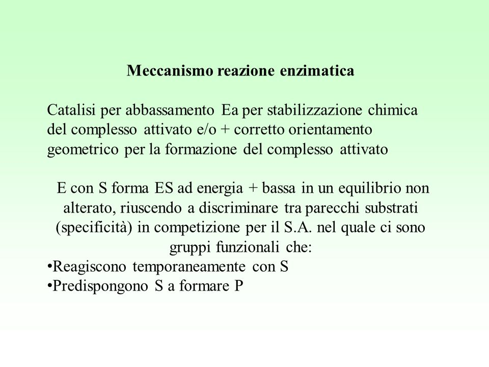 Meccanismo reazione enzimatica