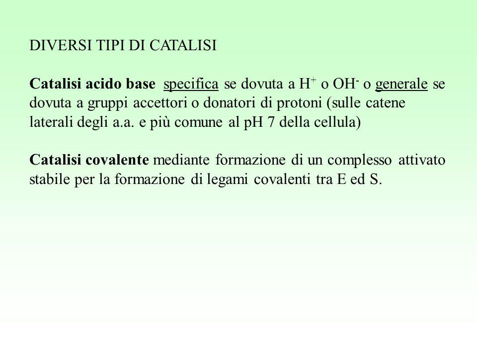 DIVERSI TIPI DI CATALISI