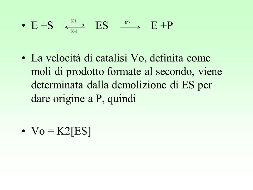 E +S ES E +P