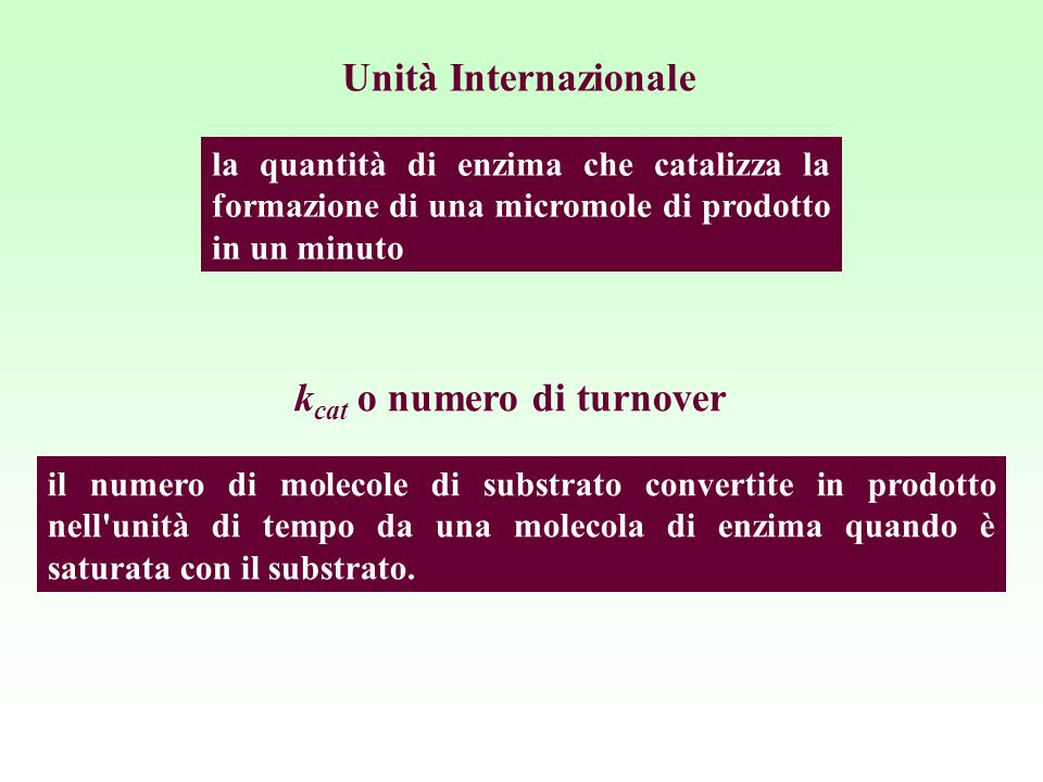 kcat o numero di turnover