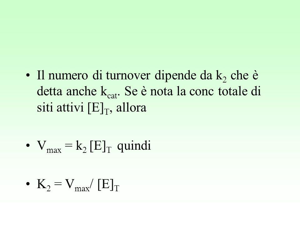 Il numero di turnover dipende da k2 che è detta anche kcat