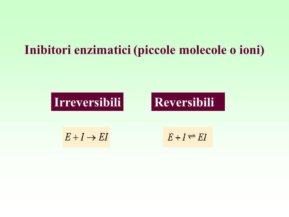 Inibitori enzimatici (piccole molecole o ioni)